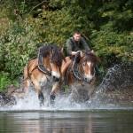 Enlèvement d'embâcles en rivière