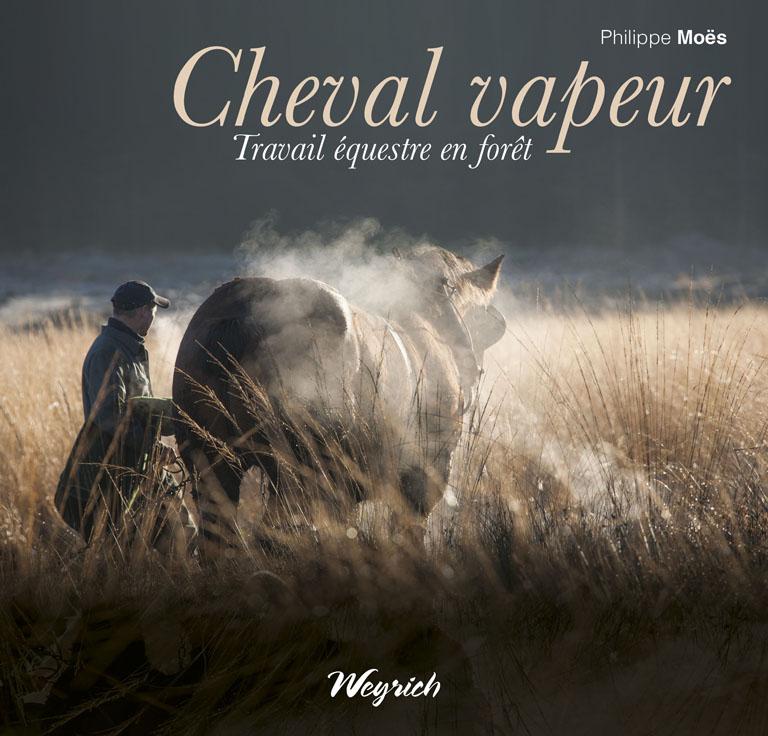 Cheval vapeur