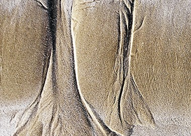 sable-melusine-mini